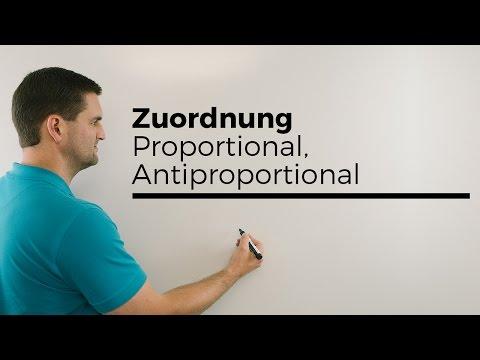 Zuordnung, Dreisatz, Proportional, Antiproportional, Übersicht | Mathe by Daniel Jung