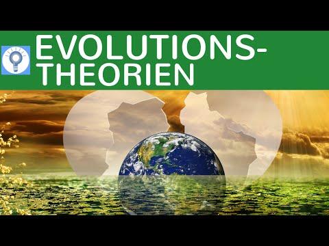 Evolutionstheorien: Cuvier, Lamarck, Darwin, Kreationismus - im Überblick | Evolution 3