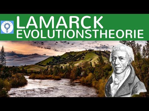 Evolutionstheorie von Lamarck - Deszendenztheorie / Abstammungstheorie | Evolution 4