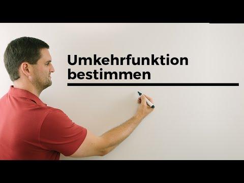 Ablauf Umkehrfunktion bestimmen | Mathe by Daniel Jung