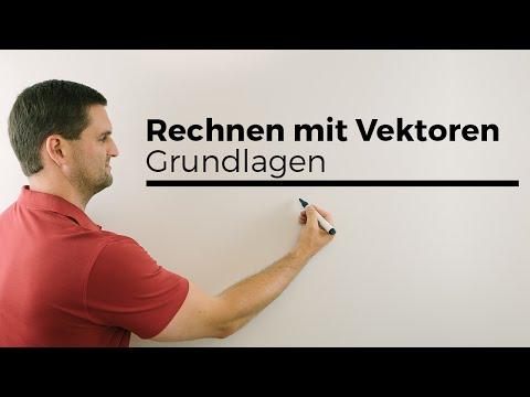 Rechnen mit Vektoren, Grundlagen, Basics, Mathe by Daniel Jung, Erklärvideo