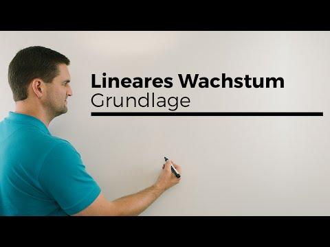 Lineares Wachstum alleine als Grundlage, danach exponentielles Wachstum, Mathe by Daniel Jung