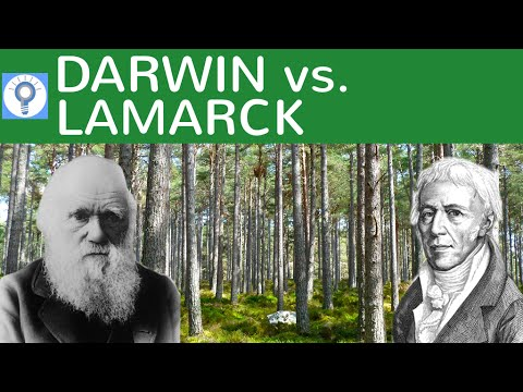 Darwin vs. Lamarck - Evolutionstheorie von Lamarck und Darwin im Vergleich | Evolution 8