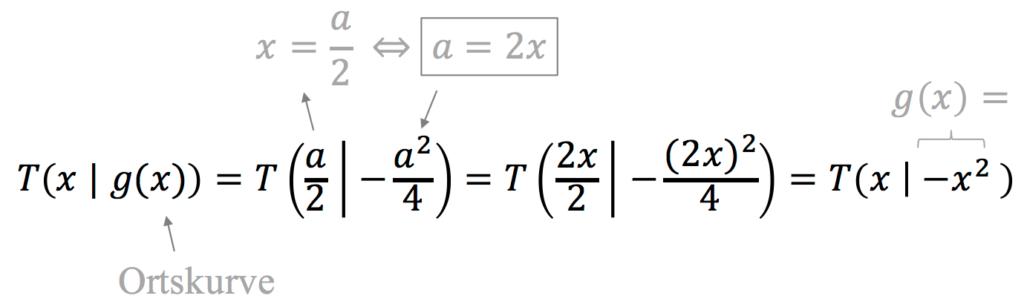 Funktionsschar Ortskurve berechnen