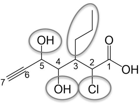 nomenklatur substituenten benennen