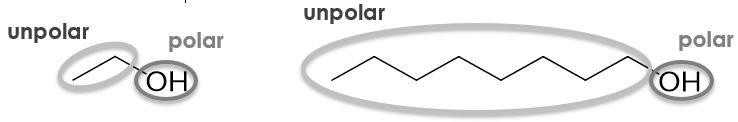 unpolar-polar-alkhohole