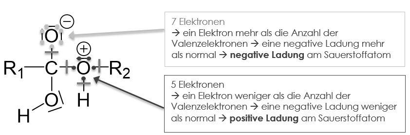 Carbonsäure & Alkohole positive Ladungen