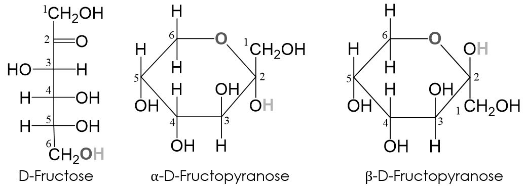 Fructopyranose