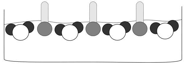 Oberflächenspannung 2